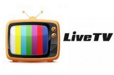 Élő TV adás